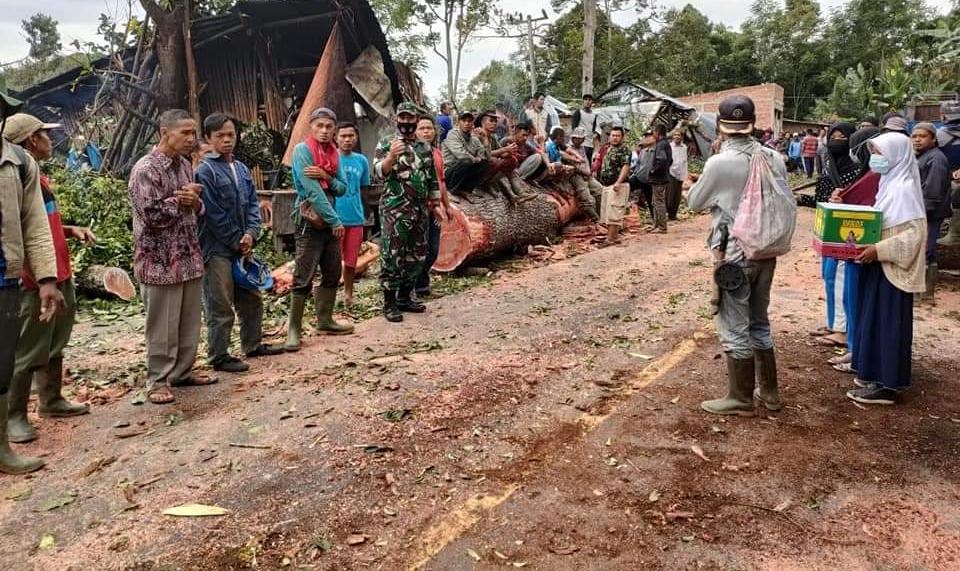 Breking news! Angin Puting Beliung Mengamuk, Satu Bocah Remaja Tewas Tertimpa Pohon